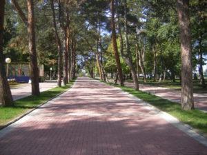 22. Behaton/betonske ploce Sumarice-Kragujevac